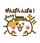長崎弁のカステラねこ2(個別スタンプ:35)