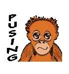 Baby Orangutan (Indonesian)(個別スタンプ:13)