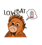 Baby Orangutan (Indonesian)(個別スタンプ:16)
