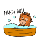 Baby Orangutan (Indonesian)(個別スタンプ:28)