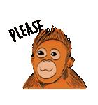 Baby Orangutan (Indonesian)(個別スタンプ:40)