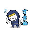 にゃんこ忍者(個別スタンプ:13)