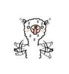 白いアルパカさん〜返信リアクション〜(個別スタンプ:19)