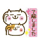 しろねこ&三毛猫♥丁寧パック【ゆる日常】(個別スタンプ:05)