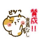 しろねこ&三毛猫♥丁寧パック【ゆる日常】(個別スタンプ:11)