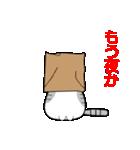 ボケま専科(個別スタンプ:17)