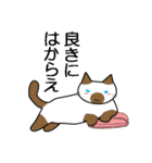 ボケま専科(個別スタンプ:19)