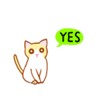 マカロン~元気な子猫ちゃん(個別スタンプ:01)