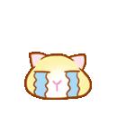 マカロン~元気な子猫ちゃん(個別スタンプ:28)