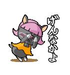 かごんま黒豚 よかおごじょ(個別スタンプ:27)