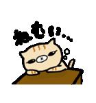 横耳ごねこ(個別スタンプ:36)