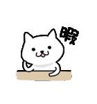 イヌだけどネコっぽいワンコ、こじ犬。(個別スタンプ:01)