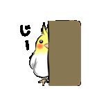 インコな気持ち(個別スタンプ:06)
