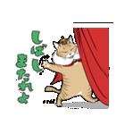 猫様(個別スタンプ:03)