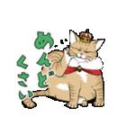 猫様(個別スタンプ:35)