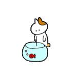子猫の茶々丸2(個別スタンプ:09)