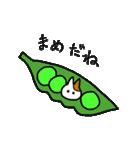 子猫の茶々丸2(個別スタンプ:14)