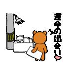 シロ箱クマと猫(個別スタンプ:03)