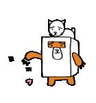シロ箱クマと猫(個別スタンプ:29)