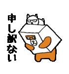 シロ箱クマと猫(個別スタンプ:37)