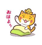 困り顔の茶トラ猫(個別スタンプ:01)