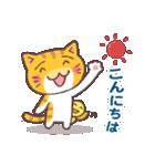 困り顔の茶トラ猫(個別スタンプ:02)