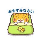 困り顔の茶トラ猫(個別スタンプ:04)