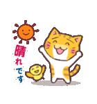 困り顔の茶トラ猫(個別スタンプ:05)