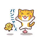 困り顔の茶トラ猫(個別スタンプ:13)