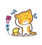 困り顔の茶トラ猫(個別スタンプ:18)