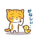 困り顔の茶トラ猫(個別スタンプ:19)