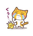 困り顔の茶トラ猫(個別スタンプ:20)