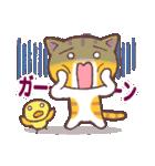 困り顔の茶トラ猫(個別スタンプ:21)