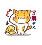 困り顔の茶トラ猫(個別スタンプ:24)