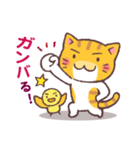 困り顔の茶トラ猫(個別スタンプ:27)