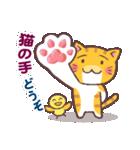 困り顔の茶トラ猫(個別スタンプ:36)