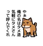 犬のタメさん語る(個別スタンプ:01)