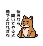 犬のタメさん語る(個別スタンプ:02)