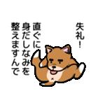 犬のタメさん語る(個別スタンプ:17)