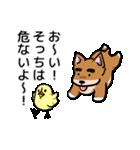 犬のタメさん語る(個別スタンプ:25)