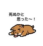 犬のタメさん語る(個別スタンプ:29)
