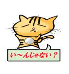 ネコの喜怒哀楽(個別スタンプ:3)