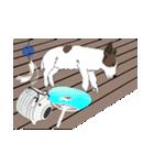 ジャックラッセルテリア-銀じいさん-2-JRT(個別スタンプ:8)