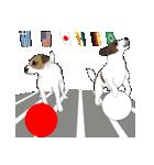 ジャックラッセルテリア-銀じいさん-2-JRT(個別スタンプ:10)