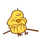 ネコパンダひよこトマト4(個別スタンプ:19)
