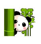 日本語と中国語(簡体字)を話すパンダ(個別スタンプ:1)