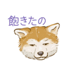 6犬種の日本犬スタンプ(個別スタンプ:01)