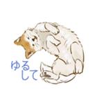 6犬種の日本犬スタンプ(個別スタンプ:04)
