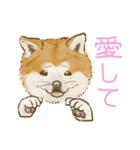 6犬種の日本犬スタンプ(個別スタンプ:06)