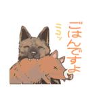 6犬種の日本犬スタンプ(個別スタンプ:10)